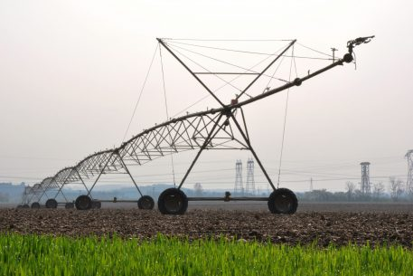 The Water-Energy-Food Security Nexus in the Western Mediterranean. Development and Sustainability in the 5+5 Area