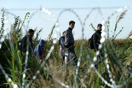 Entorns hostils a la Mediterrània