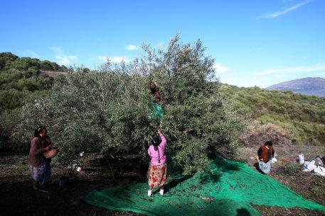 Mujeres y población rural joven: el gran reto del desarrollo