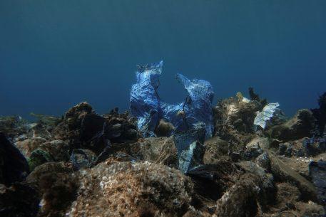 Mediterranean, Medioplasticae.  Analysis of Plastic Pollution in the Mediterranean during the Coronavirus Outbreak