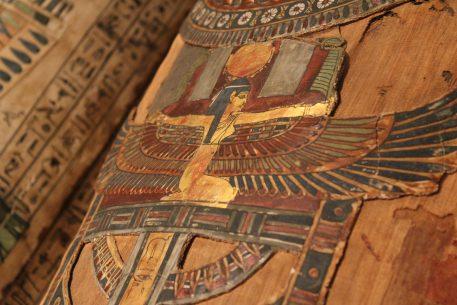 Inauguration de l'exposition «Les fleurs du pharaon»