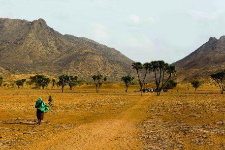 El Sahel y nosotros
