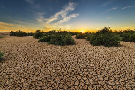 Med Dialogues +2030. Changement climatique et environnemental en Méditerranée : comprendre l'ampleur du défi